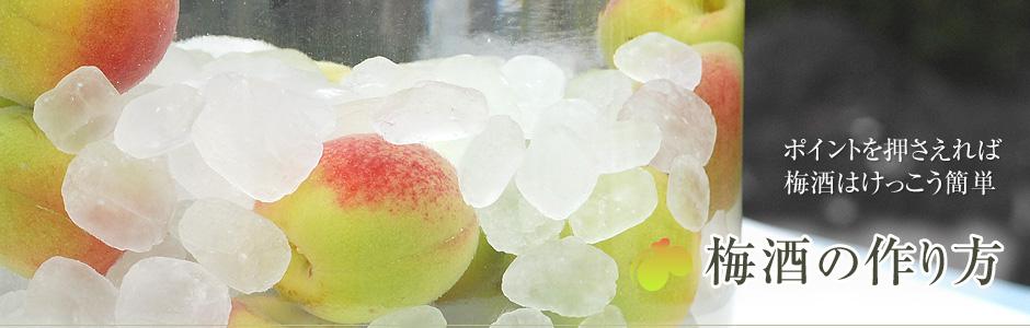 梅酒 氷砂糖 量